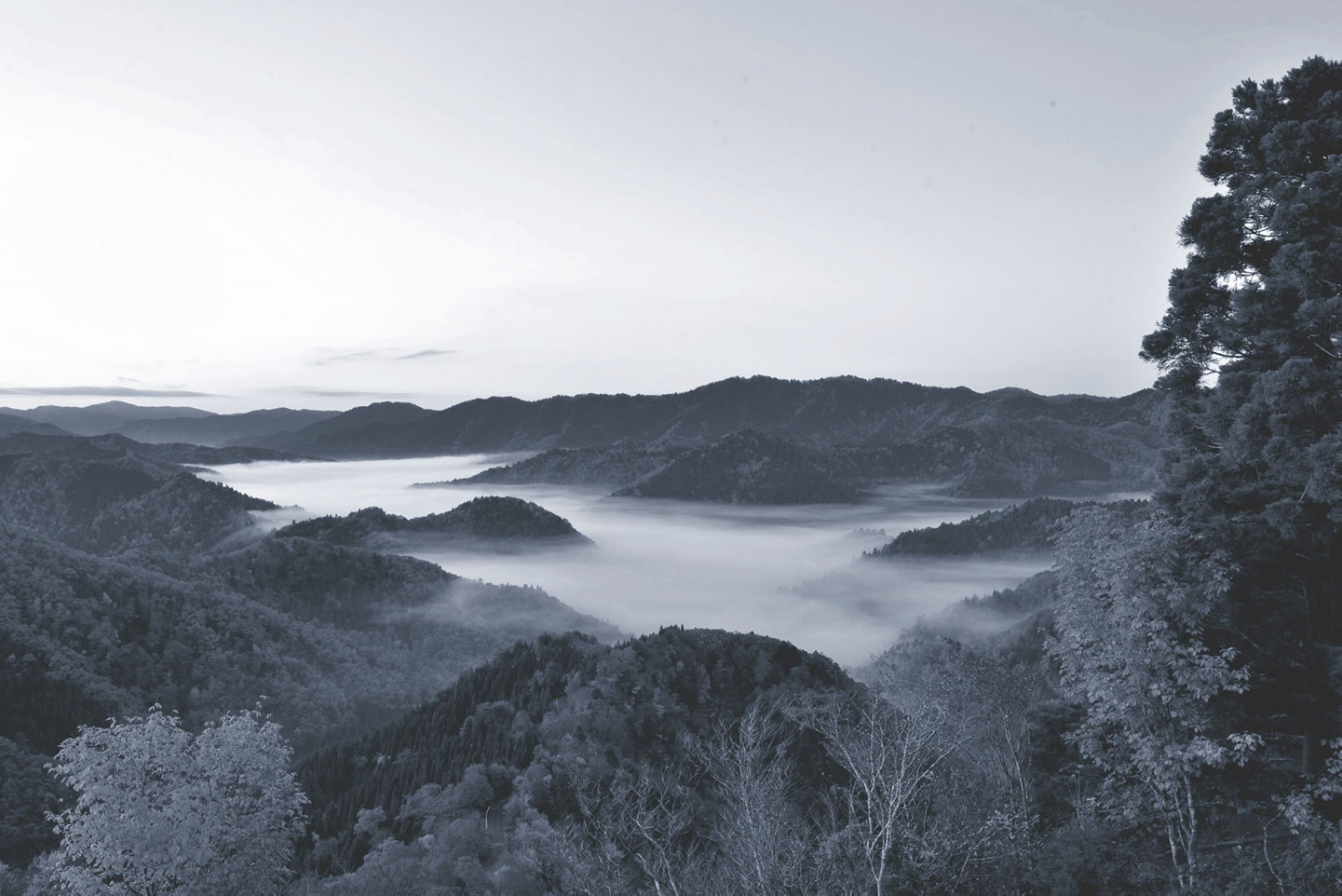 朽木小入峠の雲海